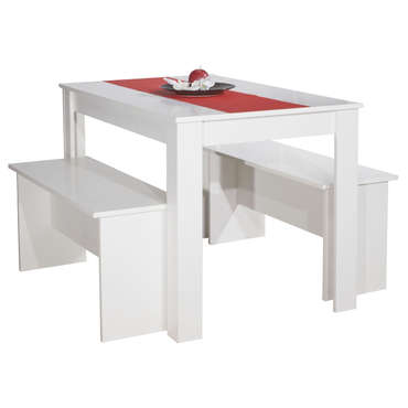 Lot de 2 bancs + table